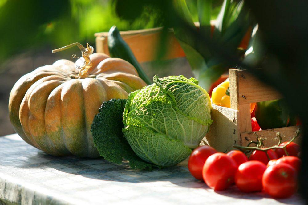 La diététique des quatre saisons